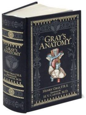 Gray's Anatomy (Barnes & Noble Collectible Classic
