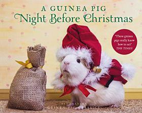 A Guinea Pig Night Before Christmas