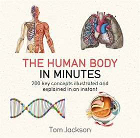 Human Body in Minutes, The