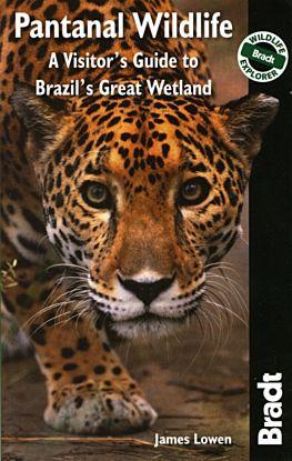 Pantanal Wildlife