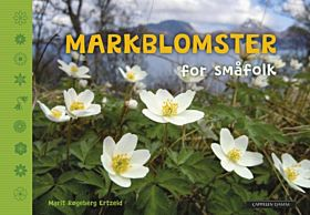 Markblomster for småfolk