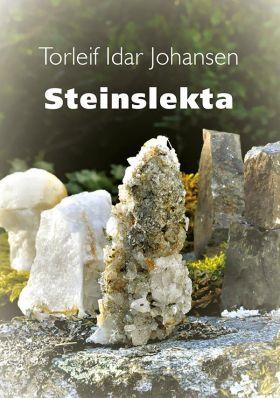 Steinslekta