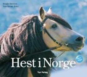 Hest i Norge