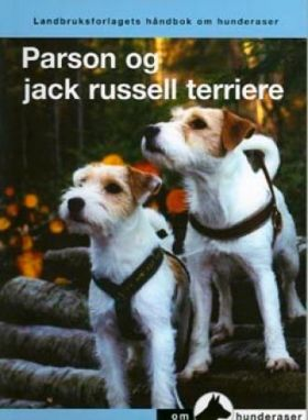 Parson og jack russel terriere