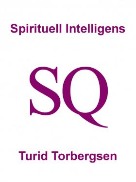 Spirituell Intelligens SQ