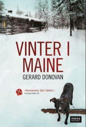 Vinter i Maine