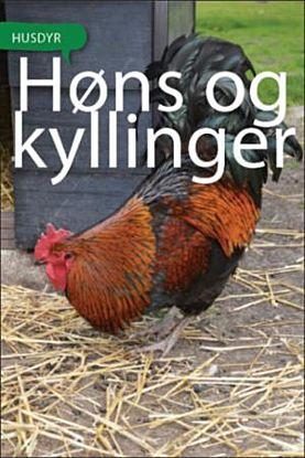 Høns og kyllinger