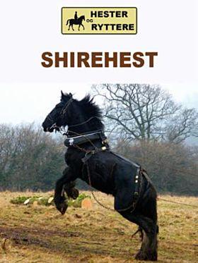 Shirehest