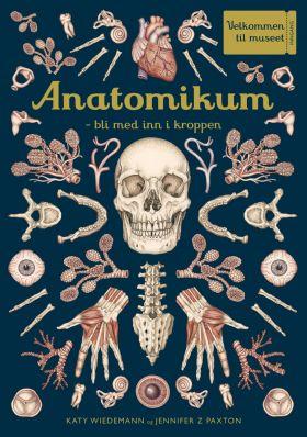 Anatomikum
