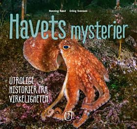 Havets mysterier 3