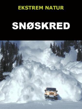 Snøskred