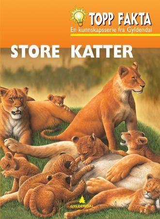 Store katter