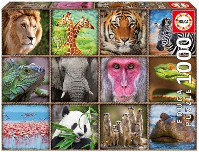 Puslespill 1000 Wild Animals Colla Educa