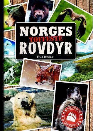 Norges tøffeste rovdyr