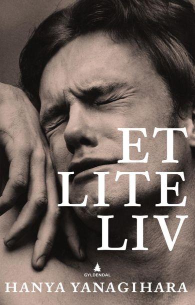 Et lite liv