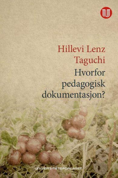 Hvorfor pedagogisk dokumentasjon?