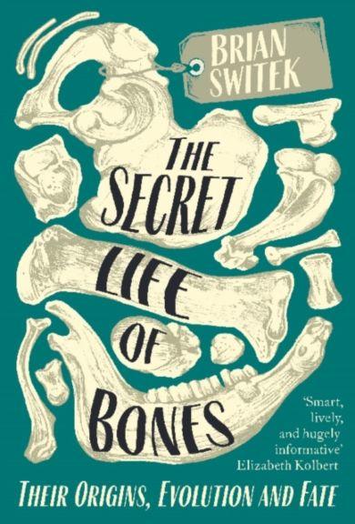 The Secret Life of Bones