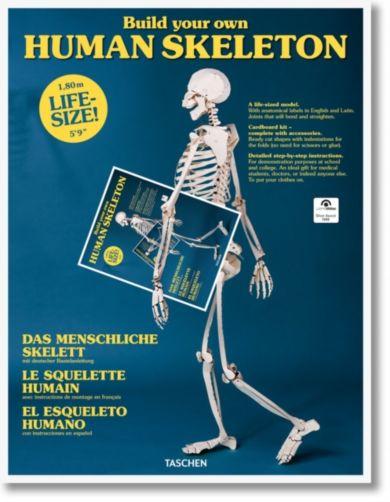 Build Your Own Human Skeleton