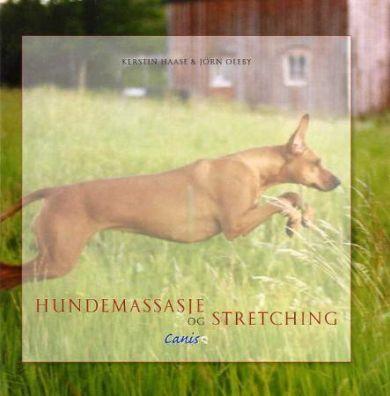 Hundemassasje og stretching