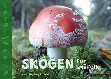 Skogen for småfolk