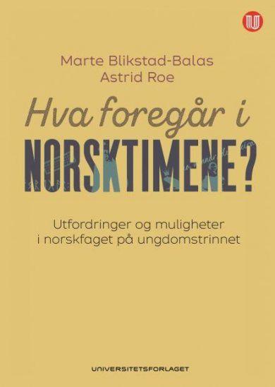 Hva foregår i norsktimene?
